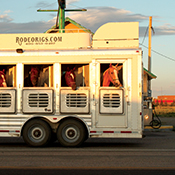 A rodeo-horse trailer makes a late-afternoon stop for gasoline on a Wyoming road.