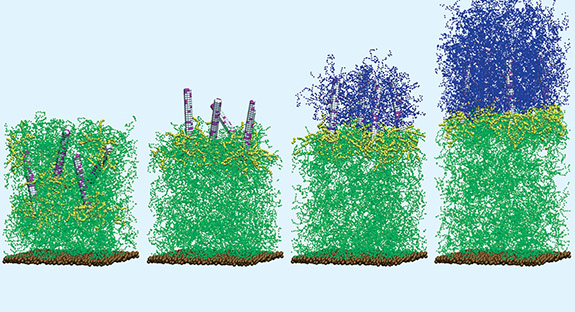Self-generating composites: In the computer-model simulation, the composite is cut (far left) and the nanorods begin a migration to the cut interface. In the third image, the polymerization from the rods surface and cross-linking begins, culminating in the newly regrown gel (final image).