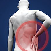 Stem Cells from Muscle Repair Nerve Damage After Injury | Pitt ...