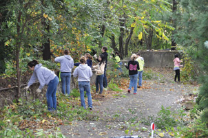 Students work on paring back shrubbery in South Oakland's Oakcliffe Overlook Park & Greenway, a protected greenway within the City of Pittsburgh.
